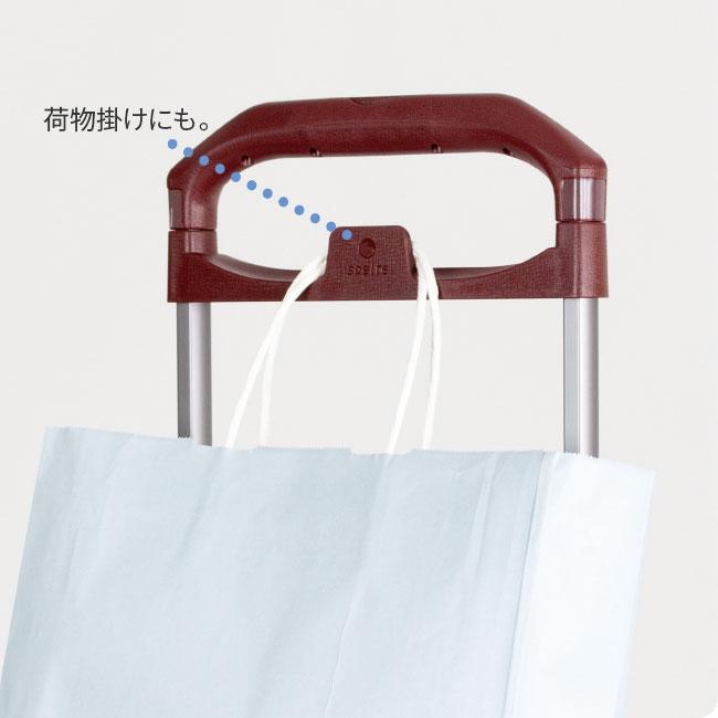 ヨーロピアンデザイン サイドカートファム