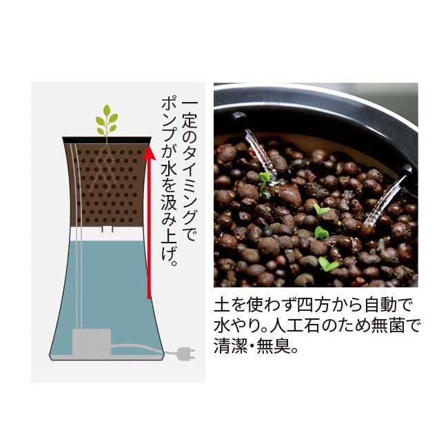 ボタニアム 水耕栽培キット・家庭菜園プランター