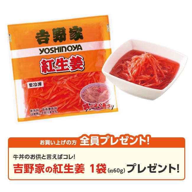日本直販限定 吉野家お試しセット(6種・12食)紅生姜プレゼント付