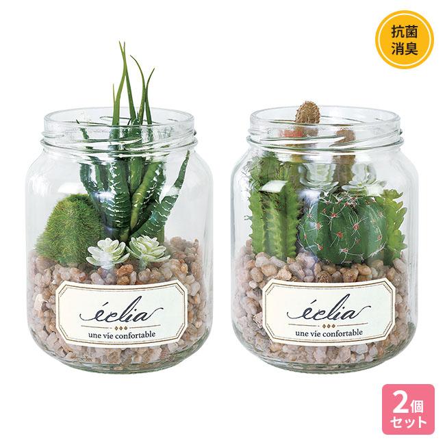 消臭アーティフィシャル サボテン・多肉植物 2個セット【合わせ買い対象】