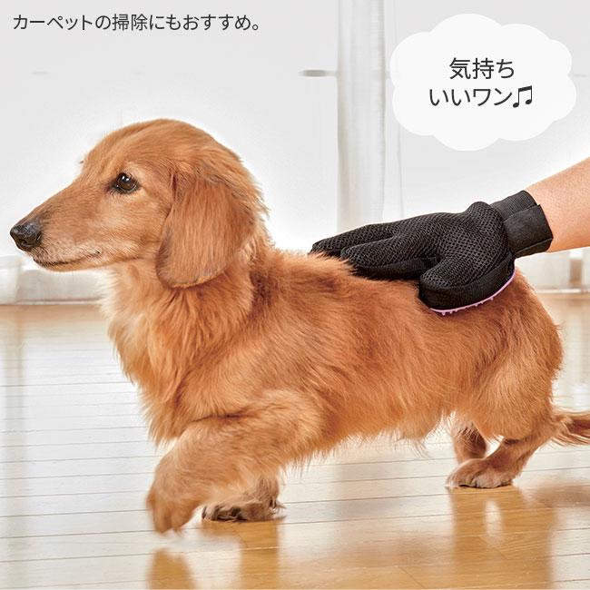 ペットのブラッシンググローブ【合わせ買い対象】