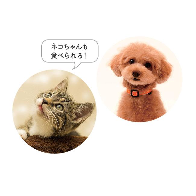 【愛犬用】お試し15g付き 国産野菜プレミアムポトフ(200g)