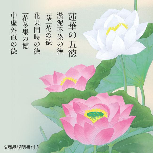 清蓮 画/八代玲華