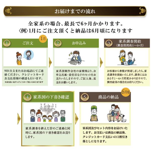 本格家系図セット