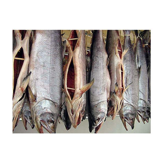 越後村上名産塩引き鮭4袋