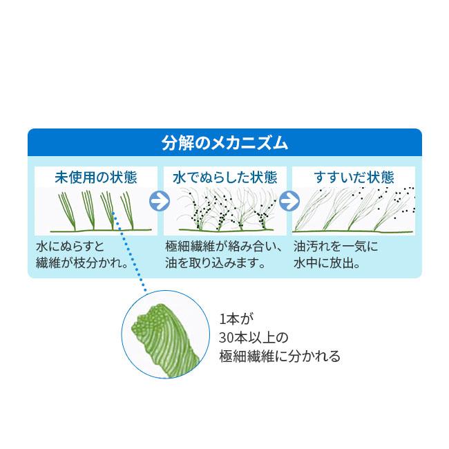 植物由来万能ふきん クリーンプラス10枚セット