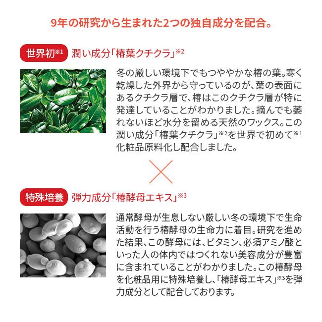 五島の椿・椿酵母せっけん+椿酵母オイル(フェイス)セット