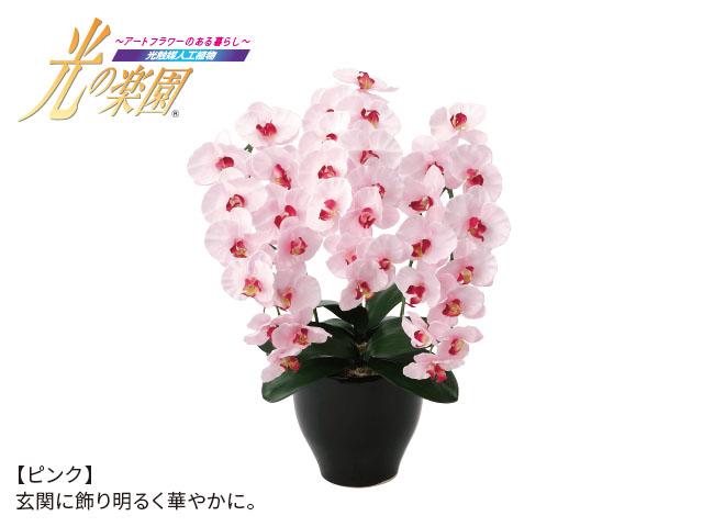 <光触媒人工植物>プレミアム胡蝶蘭