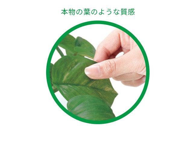 <光触媒人工植物>フレッシュアンスリューム