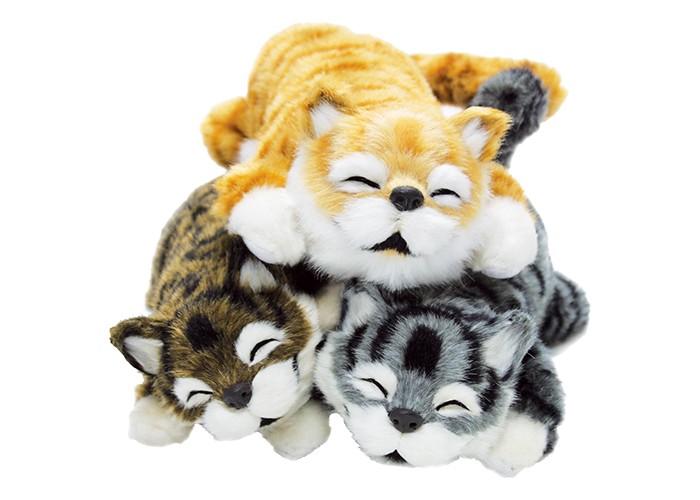 3匹で笑う!猫田課長