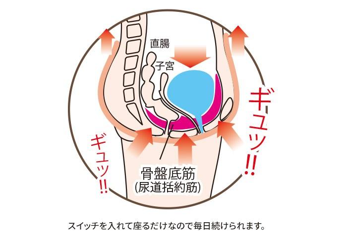 骨盤底筋エクササイズ キュットブル