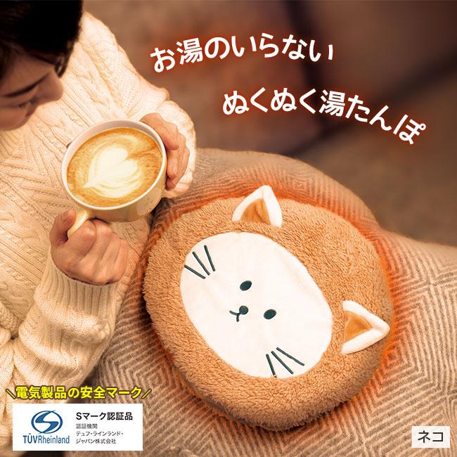 【2019新作】蓄熱充電式エコ湯たんぽ2個組