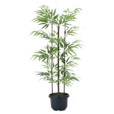 <光触媒人工植物>黒竹1.0