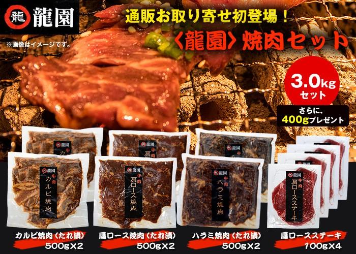 <龍園>焼肉セット