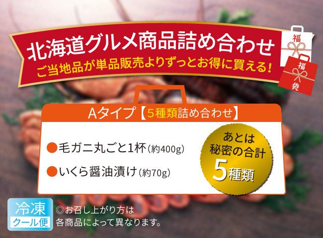 北海道グルメ商品詰め合わせ 5種類(Aタイプ)