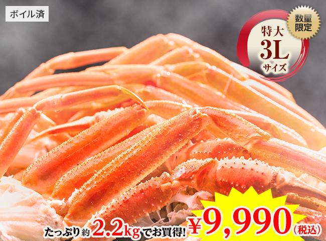特選・3Lサイズ 本ズワイガニ 脚肉お買い得セット