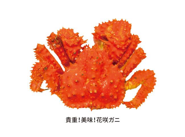 ゆで花咲ガニむき身 400g