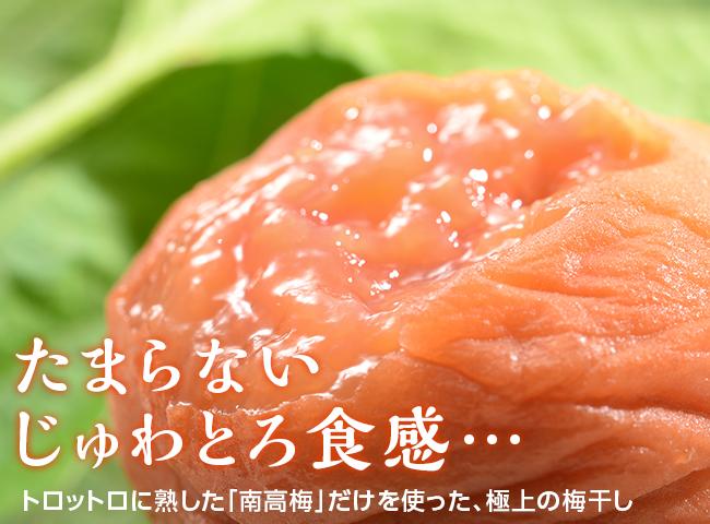 <新>紀州南高梅 完熟つぶれ梅
