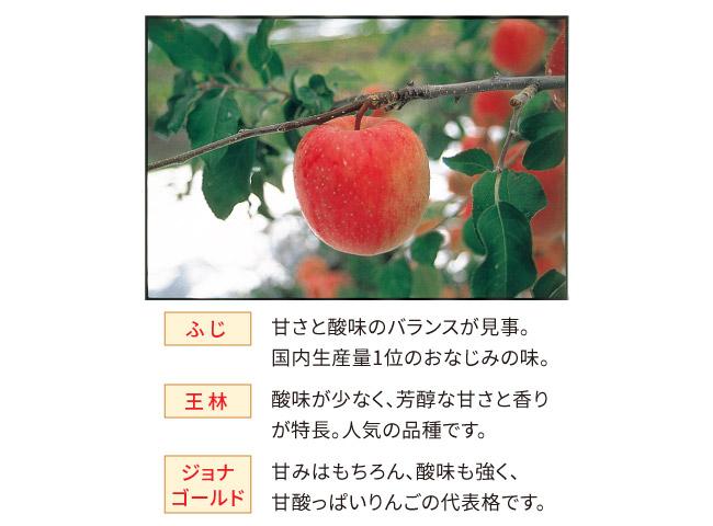 粒入りすりおろしりんご3種詰合 計18個