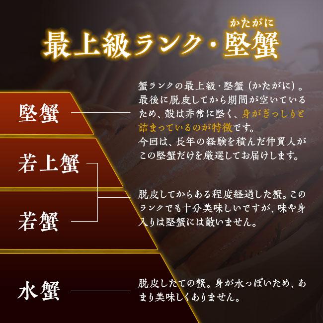 札幌市中央卸売市場仲買人厳選ボイルズワイガニ3~4Lサイズ(特典品付)