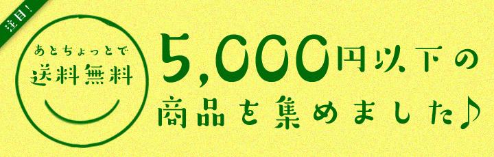 5000円以下の商品を集めました。 3点以上購入で送料無料。