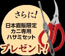 さらに!日本直販限定 カニ専用 ハサミセットをプレゼント!
