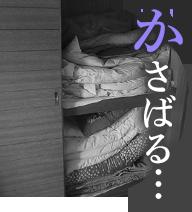「かさばる…」のイメージ画像